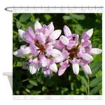 Redbud in MO Cercis canadensis f Shower Curtain