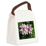 Redbud in MO Cercis canadensis f Canvas Lunch Bag