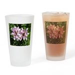 Redbud in MO Cercis canadensis f Drinking Glass