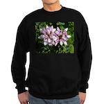 Redbud in MO Cercis canadensis f Sweatshirt