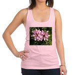 Redbud in MO Cercis canadensis f Racerback Tank To