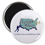 Big Push Magnet