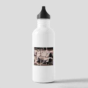 Merry go cat Water Bottle