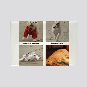Dog Lessons for People Rectangle Magnet