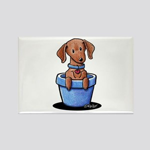 KiniArt Potted Doxie Rectangle Magnet