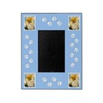 Pomeranian in Daisies Picture Frame