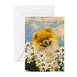 Pomeranian in Daisies Greeting Cards (Pk of 20)