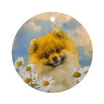 Pomeranian in Daisies Round Ornament