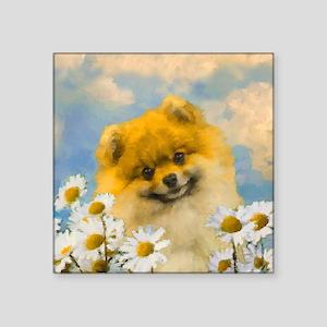 "Pomeranian in Daisies Square Sticker 3"" x 3"""