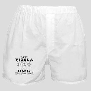 Vizsla not just a dog Boxer Shorts