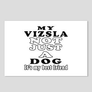 Vizsla not just a dog Postcards (Package of 8)