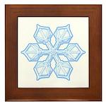 Flurry Snowflake XIX Framed Tile