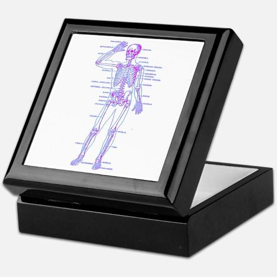 Red Blue Skeleton Body Diagram Keepsake Box