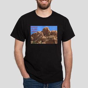 Garden of the Gods #4 T-Shirt