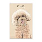 Poodle Mini Poster Print