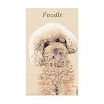 Poodle Sticker (Rectangle)