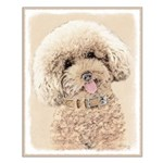Poodle Small Poster