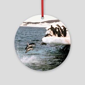 Adelie Penguins Ornament (Round)