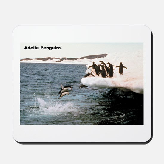 Adelie Penguins Mousepad