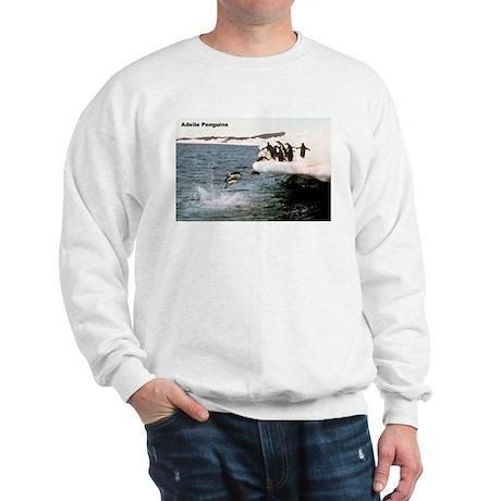 Adelie Penguins (Front) Sweatshirt