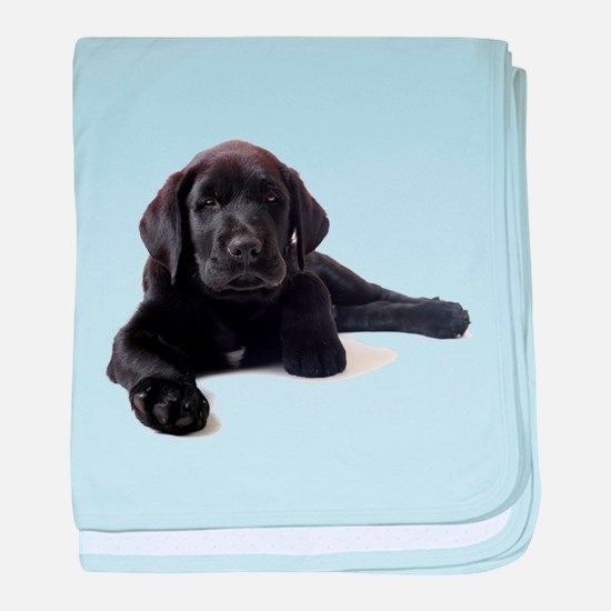 Labrador Retriever baby blanket
