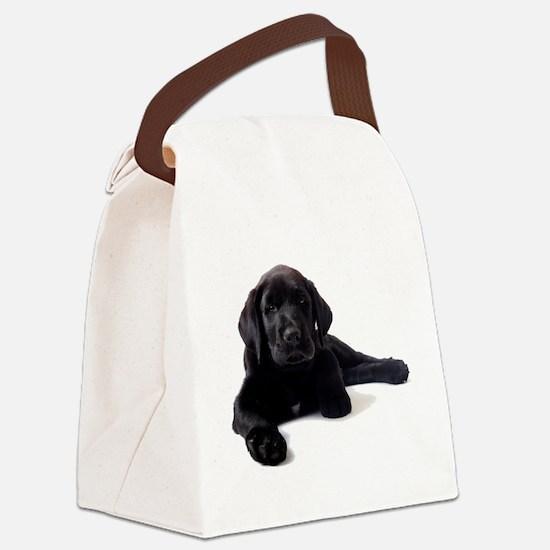 Labrador Retriever Canvas Lunch Bag