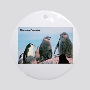 Chinstrap Penguins Ornament (Round)