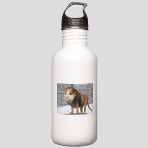 Lion Guinea Pig Water Bottle