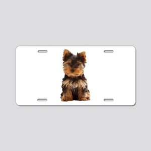 Yorkie Aluminum License Plate