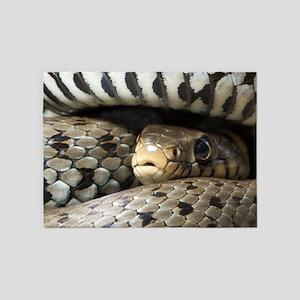 Snake 5'x7'Area Rug
