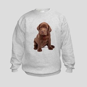 Chocolate Labrador Puppy Kids Sweatshirt