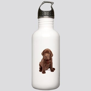 Chocolate Labrador Puppy Stainless Water Bottle 1.