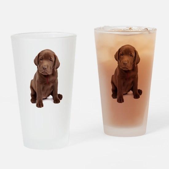 Chocolate Labrador Puppy Drinking Glass
