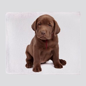 Chocolate Labrador Puppy Throw Blanket