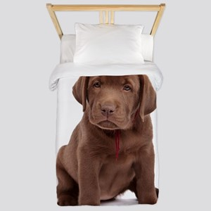Chocolate Labrador Puppy Twin Duvet