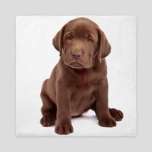 Chocolate Labrador Puppy Queen Duvet
