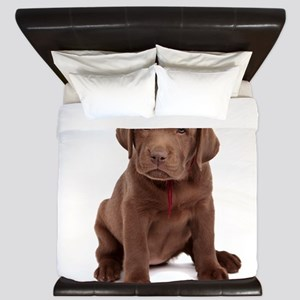 Chocolate Labrador Puppy King Duvet