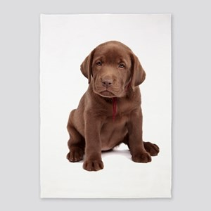 Chocolate Labrador Puppy 5'x7'Area Rug