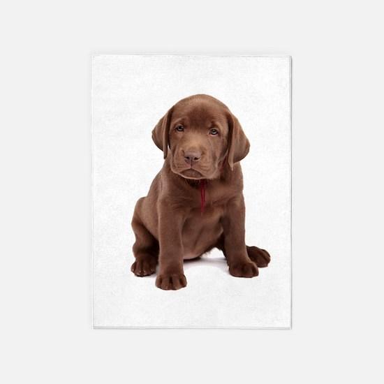 Chocolate Labrador Puppy 5'x7'Area Rug
