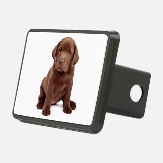 Chocolate Labrador Puppy Hitch Cover