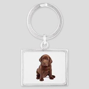 Chocolate Labrador Puppy Landscape Keychain