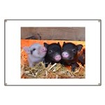 Three Little Piggies Banner