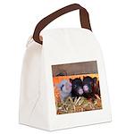 Three Little Piggies Canvas Lunch Bag