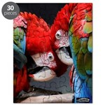 Parrot Lovers Puzzle