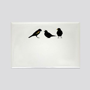 3 little birds Rectangle Magnet