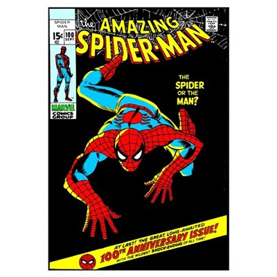 The Amazing Spider-Man (The Spider Or The Man?) Canvas Art