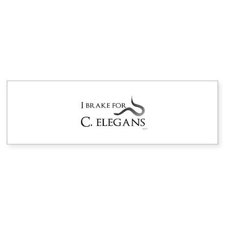 I brake for C. elegans Bumper Sticker