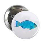 Blue Parrotfish f 2.25