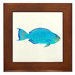 Blue Parrotfish f Framed Tile