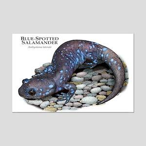 Blue-Spotted Salamander Mini Poster Print